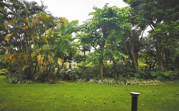小区的绿化标准是什么?